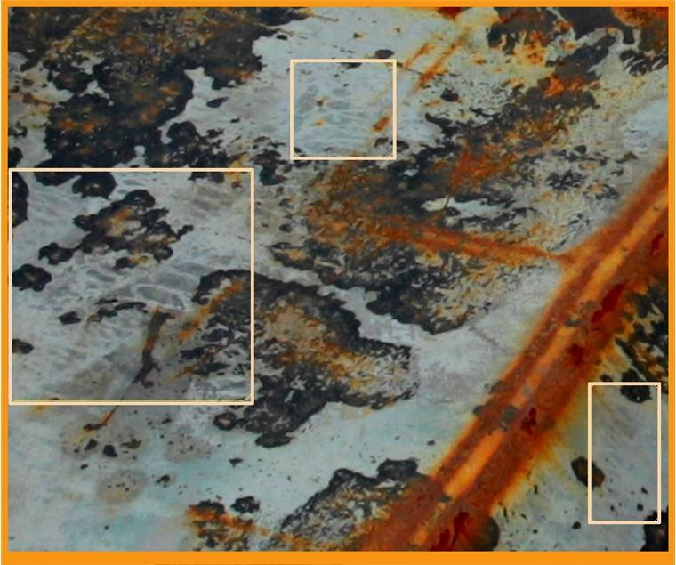 ▲신상철 전 천안함 민군합동조사위원이 천안함 가스터빈실 외판에 보이는 고압세척 흔적이라고 주장하는 부분. 사진=신상철 의견서